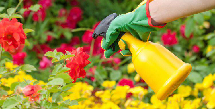 Pesticides : la nouvelle reculade du gouvernement et de la majorité juste avant les marches pour le Climat partout en France !