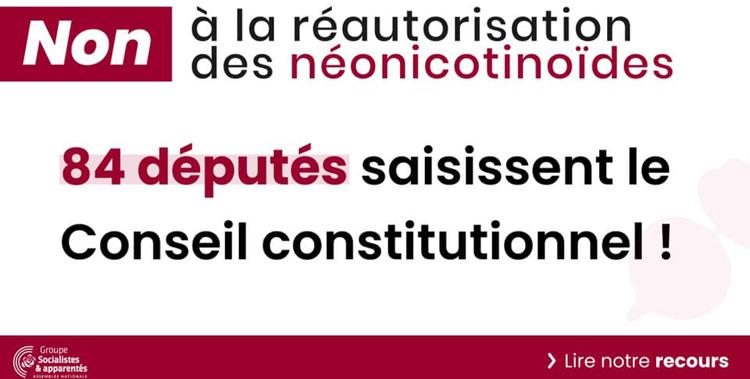 Les députés de gauche signent un recours contre la réintroduction des néonicotinoïdes